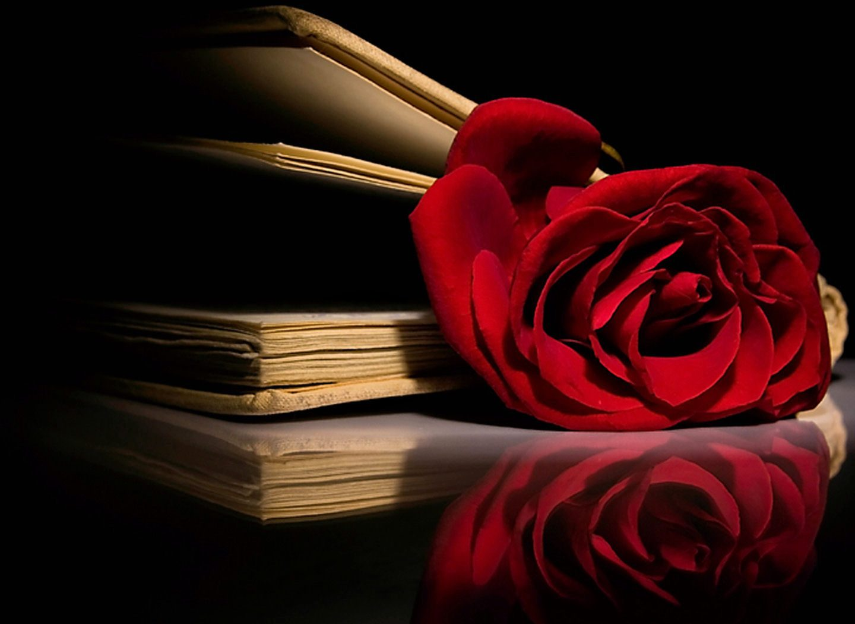 Top 12 Best Love Stories